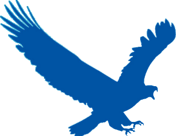 EagleGet 2.0.4.80 Crack Latest Patch Full PC Mac Free Download